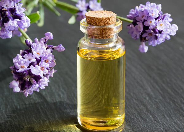 8 Types of Lavender Essential Oil