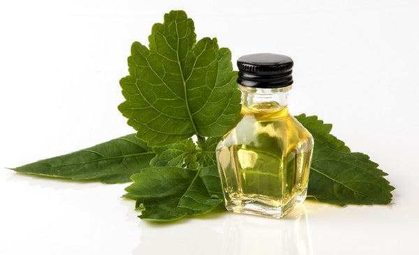 7 Benefits of Patchouli Oil