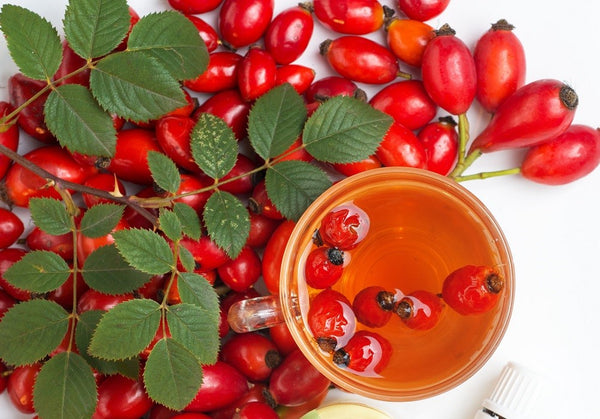 Benefits of Rosehip Oil for Skincare
