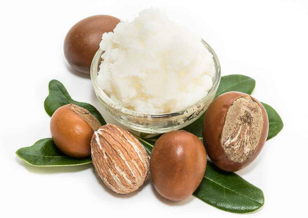 A Complete Guide For Usage Of Shea Butter For Hair Care