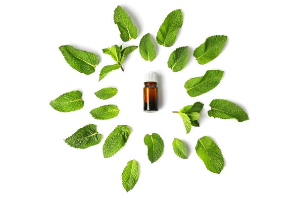 Side-Effects-of-Peppermint-Oil-that-you-Should-be-Aware
