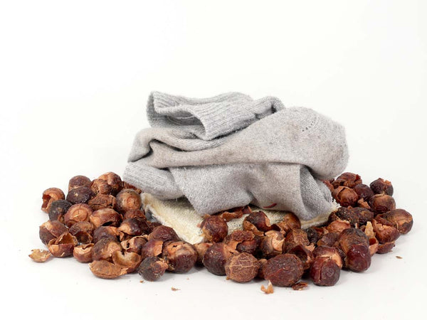 Soap Nut (Reetha) - Amazing Benefits with its Uses