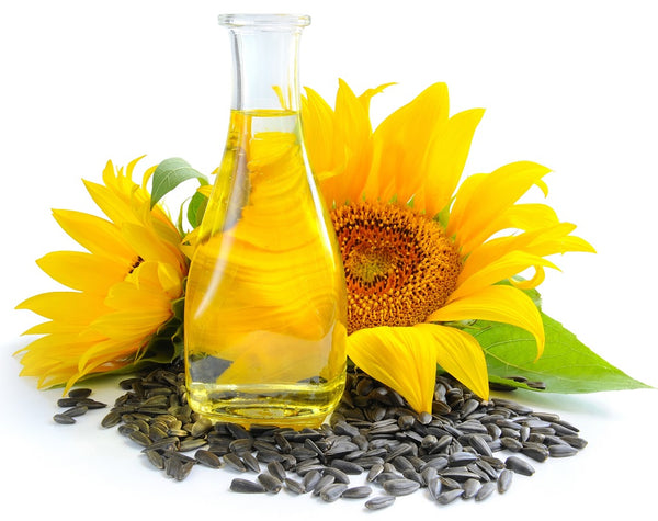 Sunflower Seed Oil- Best Ingredient For Hair Nourishment
