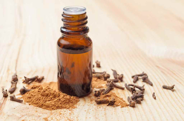 clove-oil-for-hair