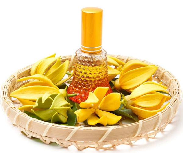 6 Benefits of Ylang ylang Oil
