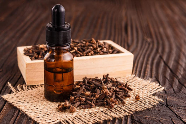 Clove-Essential-Oil-For-Pain