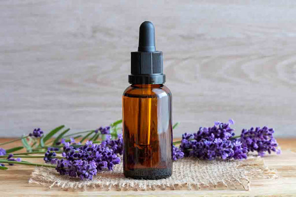 Lavender Essential Oil For Dandruff
