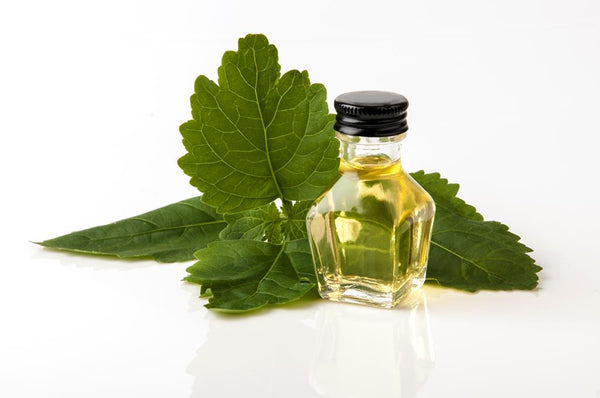 Patchouli Essential Oil for Ageing