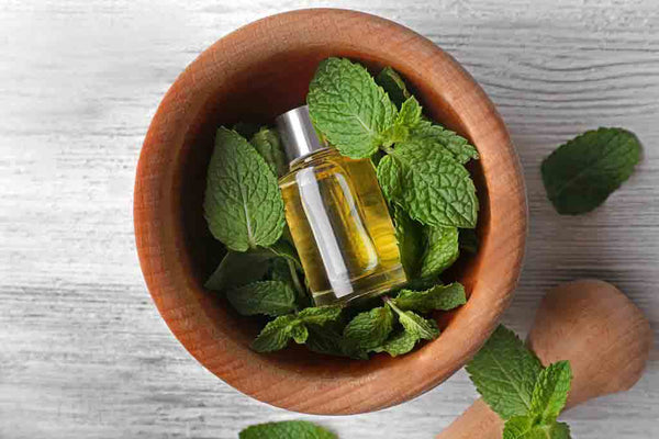 Peppermint-Essential-Oil-For-Dandruff