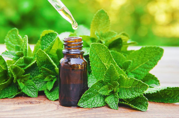 Peppermint-Essential-Oil-for-headache