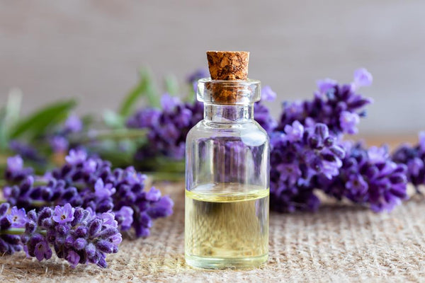 lavender oil for cure headache