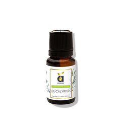anveya eucalyptus oil for cough-cold-hair-acne
