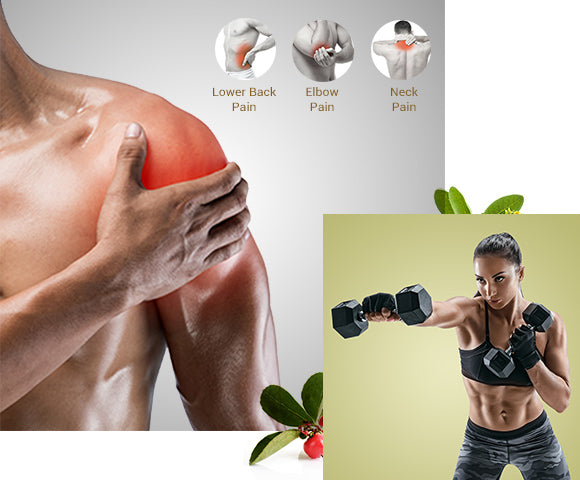 Benefits of Anveya Muscle relief Oil