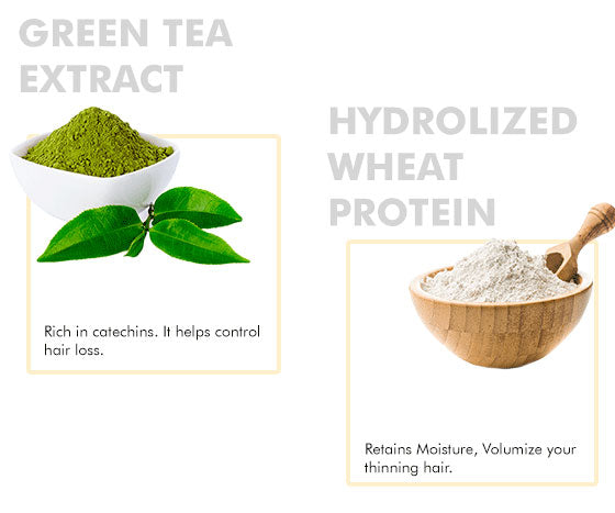 about green tea extracts and hydrolyzed wheat protien ingredients
