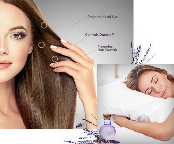 benefits of anveya lavender oil