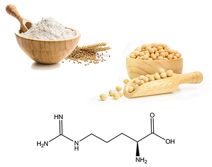 outstanding-result-wheat-amino-acid