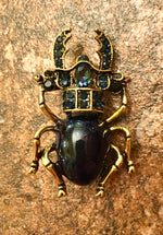 Load image into Gallery viewer, Heritage Brooch - Stag Beatle