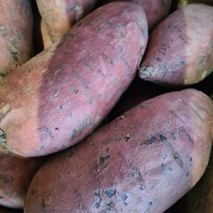 British Sweet Potato - Primal Grazing