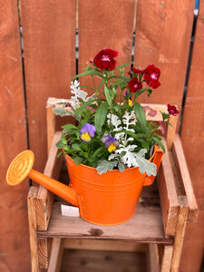 "8"" Watering Can Planter"