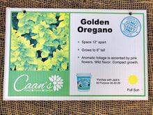 Load image into Gallery viewer, Golden Oregano