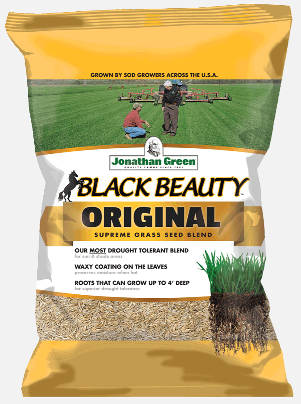 Jonathan Green Black Beauty Grass Seed