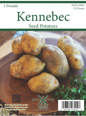 3# Kennebec Seed Potatoes