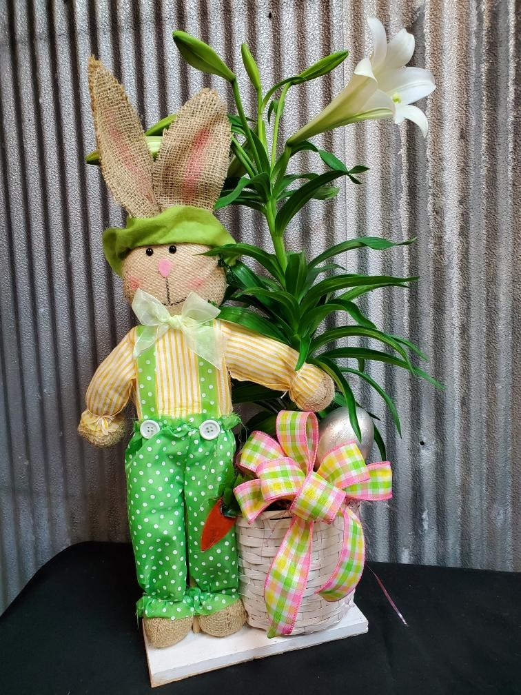 Peter Cottontail Lily