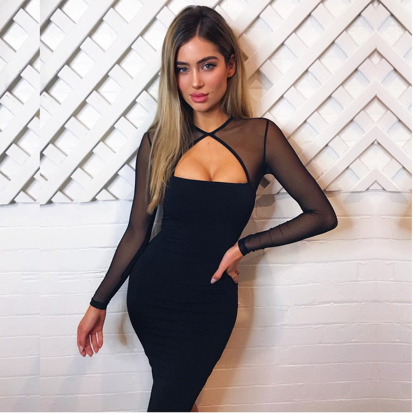 LadyZoye®Autumn Women's New Dress  Black Long Sleeve Autumn and Winter Sexy Perspective Mesh Stitching Fleece Dresses Female.