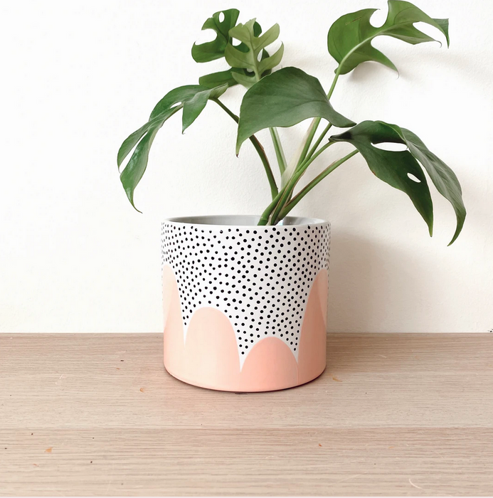 Hello Lola Peach Poppy Seed Planter