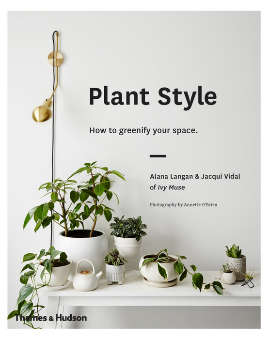 Plant Style By Ivy Muse