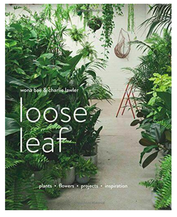 Loose Leaf - Plants, Flowers, Projects, Inspiration