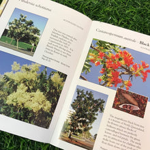 Load image into Gallery viewer, The Fabulous Flowering Trees of Cairns City by Fran Clayton