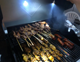 Magnetic LED Grill Lights