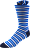 Cerulean Vines Men's Striped Socks