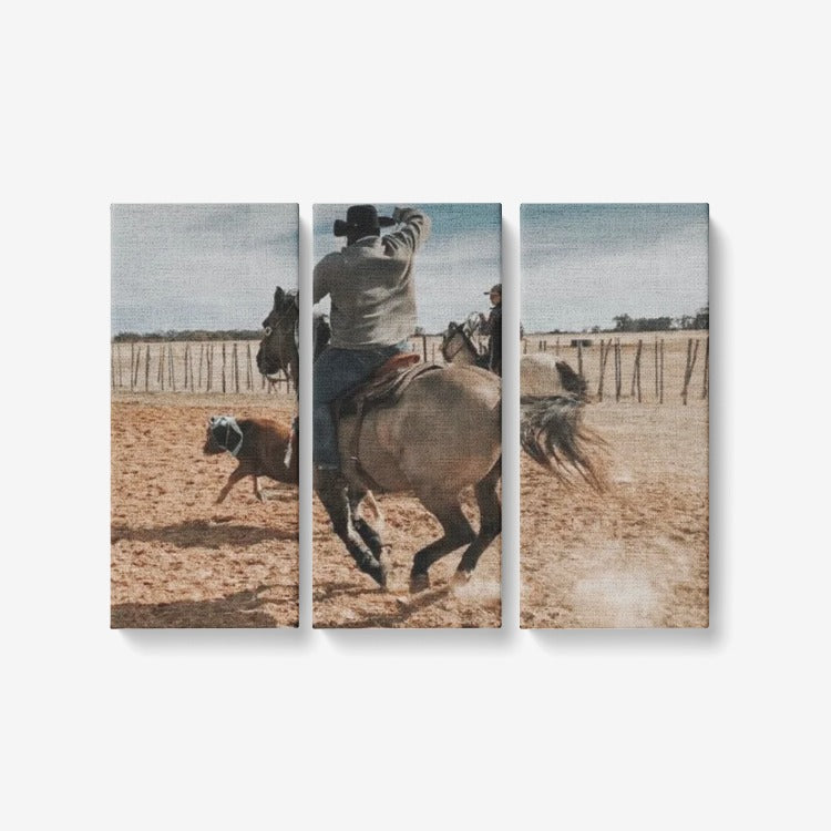 "3 Piece Canvas Wall Art for Living Room - Framed Ready to Hang 3x8""x18"" Collage Club Rodeo"