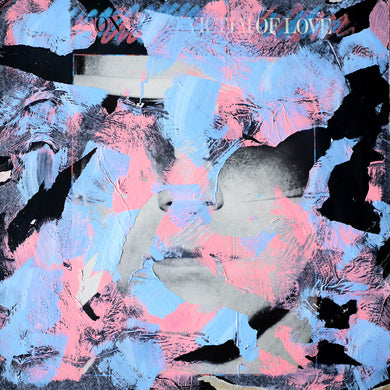 Salmon Pink And Light Blue LP Cover Art Collage - Naomi Vona Art
