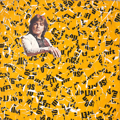 Mustard Yellow LP Cover Artwork Collage - Naomi Vona Art