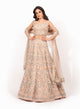 Pink Threadwork Lehenga VDS005