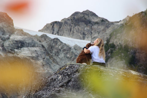 Dog and woman in the mountains on an autumn day