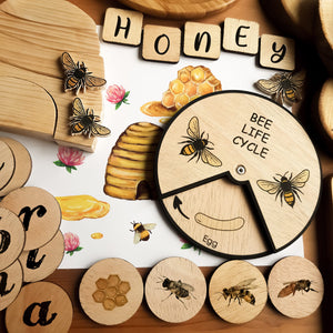 Learning Wheels - Bee Lifecycle - mytinyfingers baby products