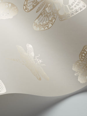 Cole and Son Whimsical Collection Butterflies and Dragonflies 15062-15067 - Cloudberry Living