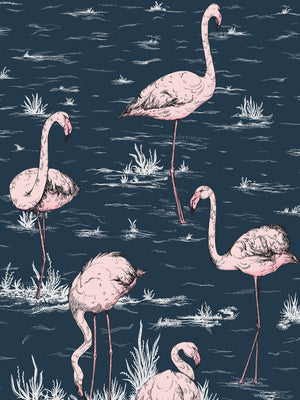 Cole & Son Icons Flamingos 11038 - 11041 - Cloudberry Living