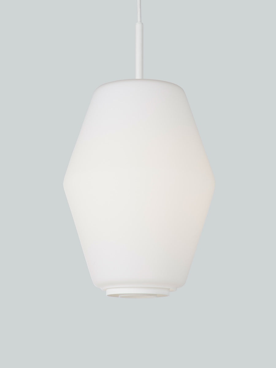 Northern Dahl Large Pendant Light - Cloudberry Living