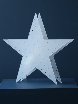 Scandinavian Frosted Star Light - Cloudberry Living