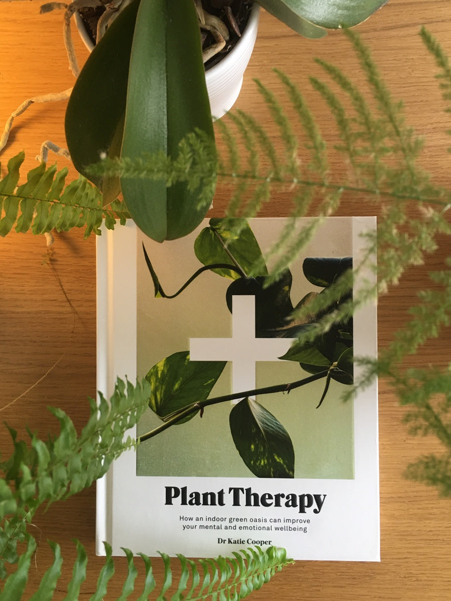 Plant Therapy By Katie Cooper Improve Your Mental & Emotional Wellbeing