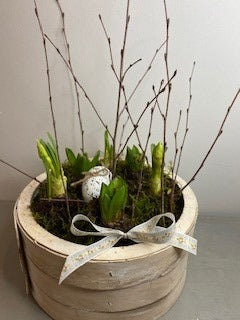 Mixed Hyacitnh & Tete Narcissus Planter