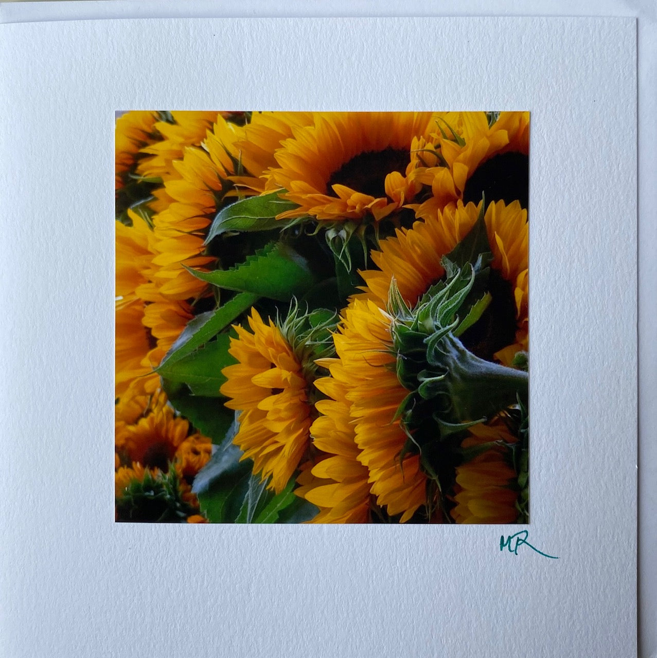 Gift Card - Sunny Sunflowers