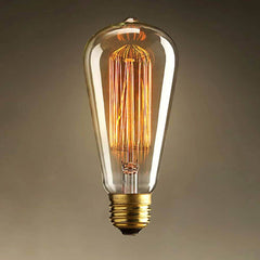 ST64 squirrel cage filament edison bulb