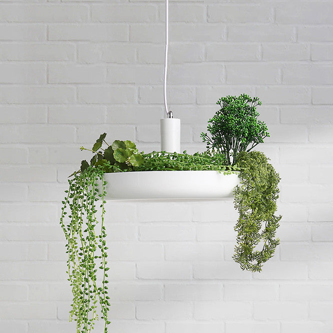 white hanging plant light