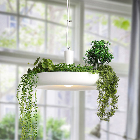 Hanging Garden Plant Pendant Light